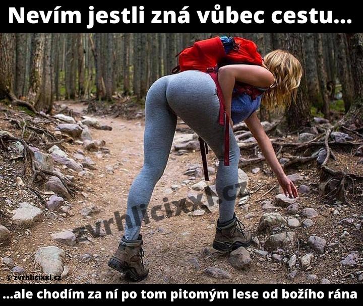 Nevím Jestli Zná Vůbec Cestu... ...ale Chodím Za Ní Po Tom Pitomým Lese Od Božího Rána