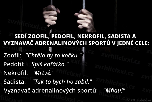 Sedí Zoofil, Pedofil, Nekrofil, Sadista A Vyznavač Adrenalinových Sportů V Jedné Cele.